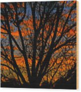 The Tree Of Shapes Wood Print