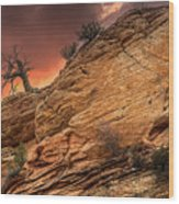 The Tree Of Zion Wood Print