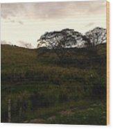 The Tree Wood Print
