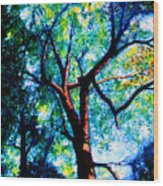 The Tree Wood Print