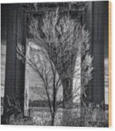 The Tree Under The Bridge Wood Print
