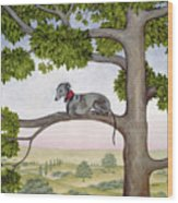 The Tree Whippet Wood Print