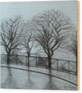 The trees by Sacre-Coeur in Montmartre Wood Print