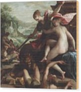 The Triumph Of Truth Wood Print by Johann or Hans von Aachen
