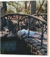 The Troll Under The Bridge Wood Print