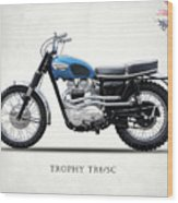 The Trophy Tr6 Sc Motorcycle Wood Print