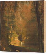 The Trout Pool Wood Print
