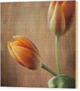 The Tulips Wood Print