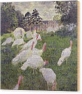 The Turkeys At The Chateau De Rottembourg Wood Print by Claude Monet