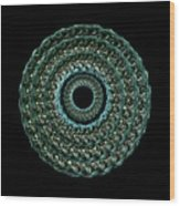 The Turqoise And Teal Infinity Of Rose Wood Print by Jacqueline Migell