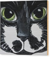 The Tuxedo Cat Wood Print