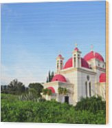 the Twelve Apostles Church Wood Print