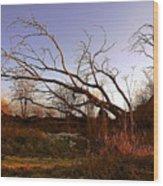 The Twilight Tree Wood Print