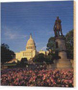 The United States Capitol, Washington Wood Print