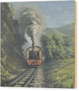 The Vale Of Rheidol Railway Wood Print