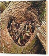 The Valentine Tree 2 Wood Print