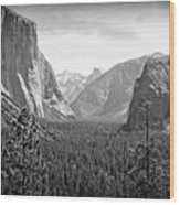 The Valley  Wood Print