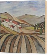The Valley Of Jesrael Wood Print