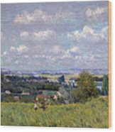 The Valley Of The Seine At Saint Cloud Wood Print