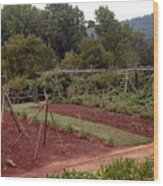 The Vegetable Garden At Monticello II Wood Print
