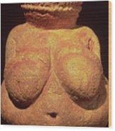 The Venus Of Willendorf Wood Print