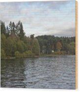 The View - Vashon Island Wood Print