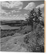 The View From Bald Mountain Wood Print