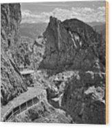 The View From Eisriesenwelt Werfen Ice Cave Wood Print