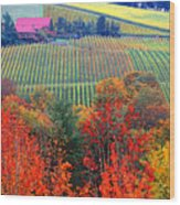 The View From Red Ridge Wood Print by Margaret Hood