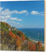 The View - Scarborough Bluffs Wood Print