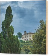 The Views From The Boboli Gardens Wood Print