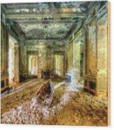 The Villa Of The Boat In The Antique Salon - La Villa Della Barca Nell'antico Salone Wood Print