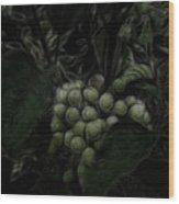 The Vineyard Wood Print