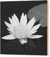 The Vintage Lily II Wood Print