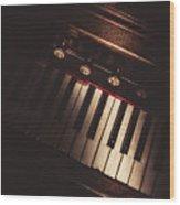 The Vintage Music Hall Wood Print