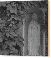The Virgin Wood Print