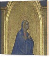 The Virgin   Left Pinnacle Panel Wood Print