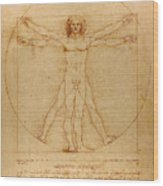 The Vitruvian Man Wood Print by