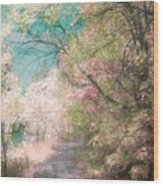 The Walkway Of Forgotten Dreams Wood Print