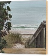 The Walkway To The Beach Wood Print