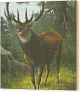 The Wapiti Wood Print