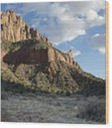 The Watchman Wood Print by Kenneth Hadlock