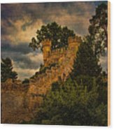 The Watchtowers Wood Print
