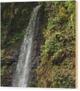 The Water Falling At The Yoro Waterfall In Gifu, Japan, November Wood Print