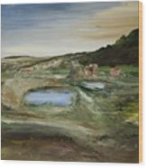 The Water Hole Ranch Wood Print