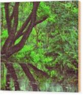 The Water Margins - Nutclough Woods Wood Print