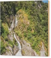 'the Water Of Life' Spring At Doubtful Sound Wood Print