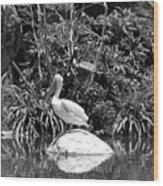 The Waterbirds Wood Print