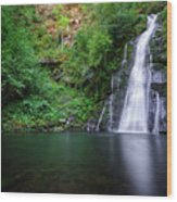 The Waterfall And Large Pool Of Vieiros Wood Print