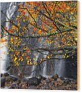 The Waterfall Wood Print